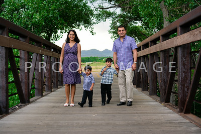 The Mehra Family
