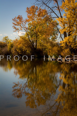 Fall Reflections 1